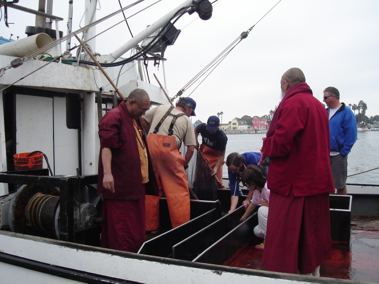 monks liberating fish in Los Angeles